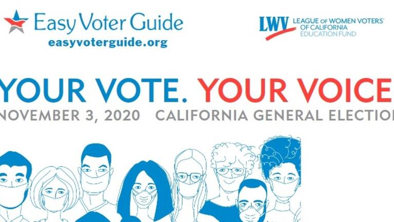Easy Voter Guide image