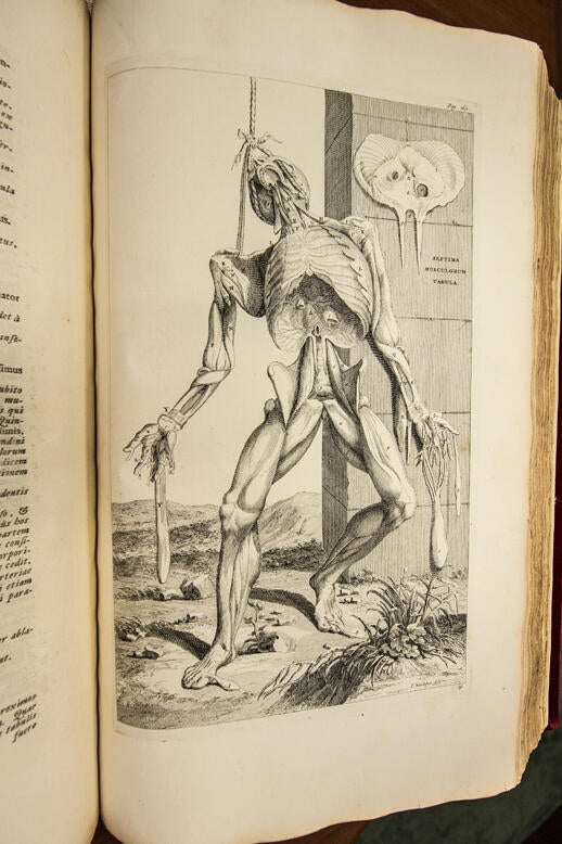 Andreas Vesalius Opera Omnia Anatomica & Chirurgica 1725. This beautiful 2-volume set, bound in red velvet, contains the full works of the father of modern human anatomy