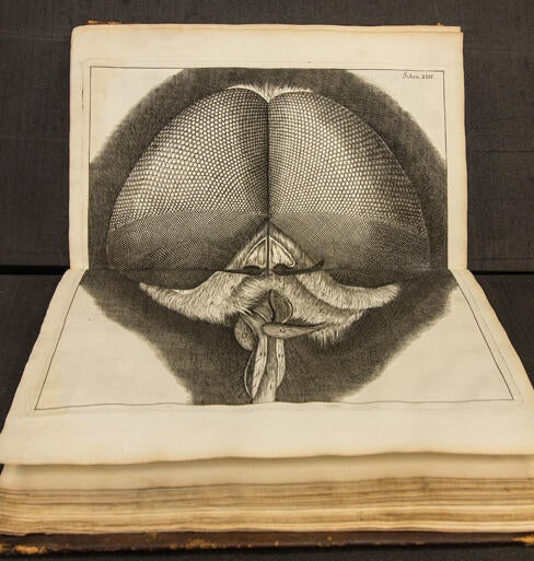 "Robert Hooke Micrographia; or, Some Physiological Descriptions of Minute Bodies Made by Magnifying Glasses 1665. This is the first book published in English on the microscope, and introduces the scientific definition of the word ""cell."""